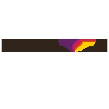 45monin